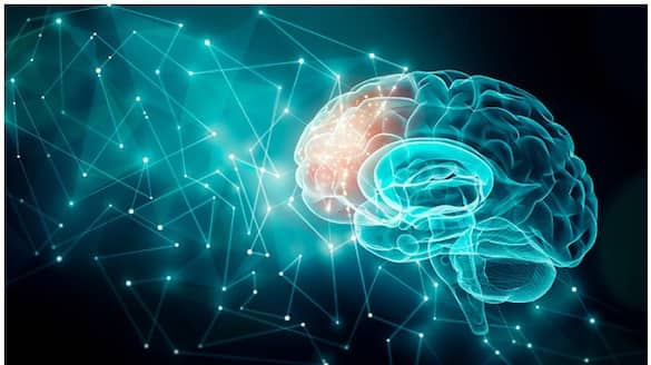 Severe Covid-19 with oxygen therapy may reduce gray matter in brain, say neurologists ALB