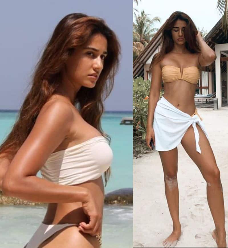 disha patani video proves her stunning talent BJC
