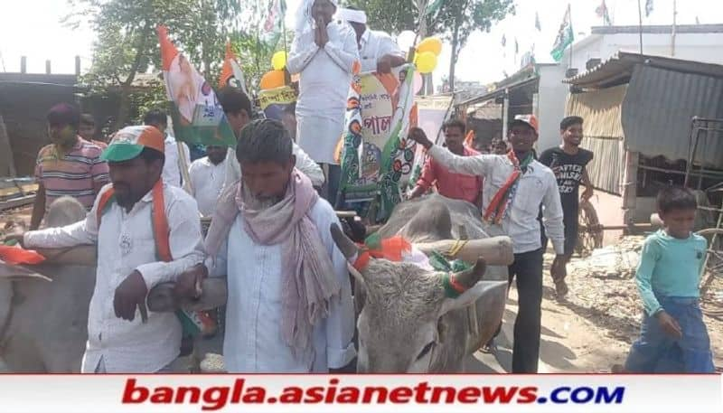 TMC candidate Gautam Pal has come out in a cart for election campaign  RTB