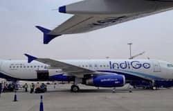 <p>IndiGo, CarterPorter, IndiGo Door-to-Door Baggage Transfer Service</p>