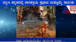 Borewell water after Snake worship in Mangalore people says Nagaradhane miracle ckm