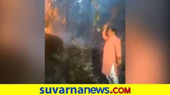 Uttarakhand Minister Fights Forest Fire With Shrub As He Filmed pod