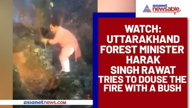 Uttarakhand Forest Minister tries to douse fire with a bush; Viral video - gps