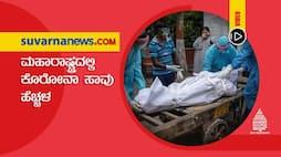 Covid19 death cases increased in Maharashtra dpl