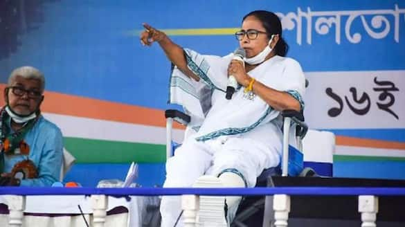 EC bans Mamata from poll campaign for 24 hours, TMC chief to stage protest-VPN
