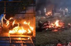 <p>surat covid patients dead bodies cremated openly</p>