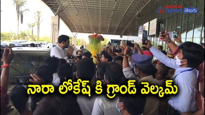 grand welcome to Nara lokesh at rajahmudry