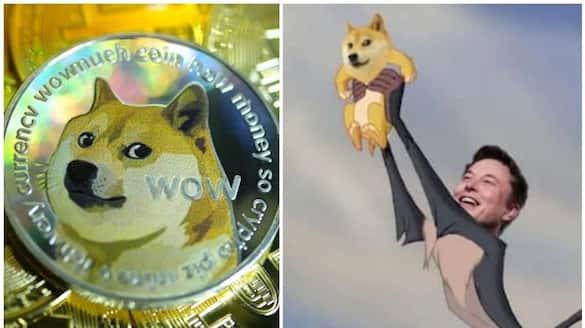 Elon Musk meme cryptocurrency Dogecoin is on a rise can be next Bitcoin