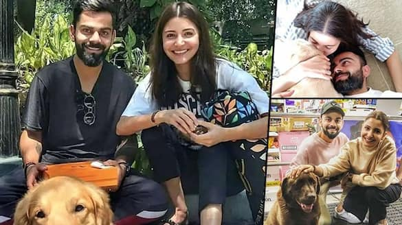 anushka sharma shared a personal video with virat kohli BJC