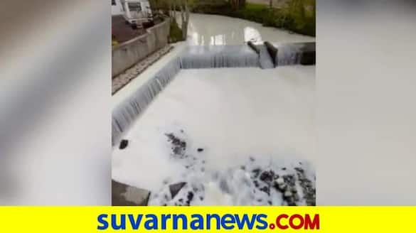 UK River turns white after milk truck overturns pod