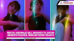 Watch Shehnaaz Gill grooves to Justin Bieber's Peaches, wins netizens' hearts-tgy
