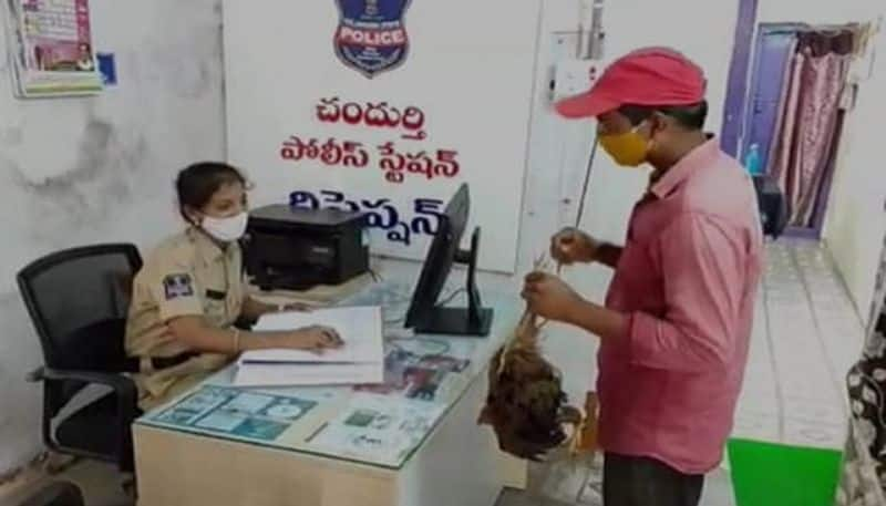 man come with dead cock to police station in rajanna sircilla district - bsb