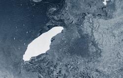<p>a68 iceberg</p>