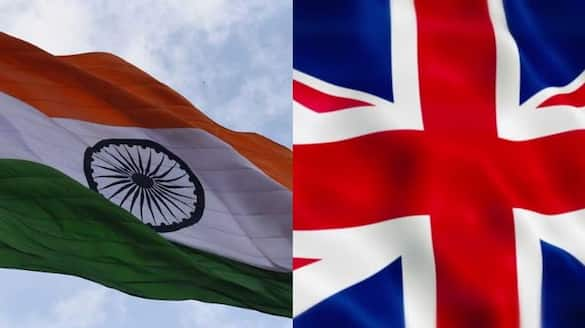 India UK discuss COVID vaccine certification process, 'no technical concerns'-dnm