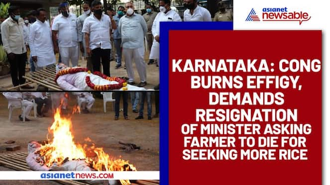Karnataka Cong burns effigy, demands resignation of Minister asking farmer to die for seeking more rice - ycb