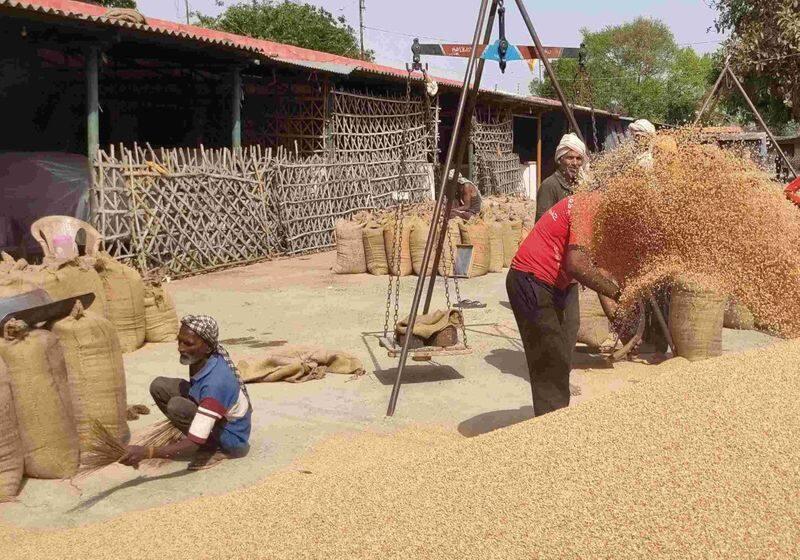 <p>पांचवीं टीम में गेहूं खरीद की व्यवस्था सुनिश्चित करने, समय से भुगतान करने, किसानों को खाद, बीज आदि की व्यवस्था करने का कार्य करेगी। समिति यह भी सुनिश्चित करेगी कि सभी जरूरी सामान आम लोगों को उचित मूल्य पर मिलें।</p>