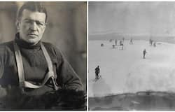 <p>120 year old mystery of Sir Ernest Shackleton's deteriorating health finally been solved</p>