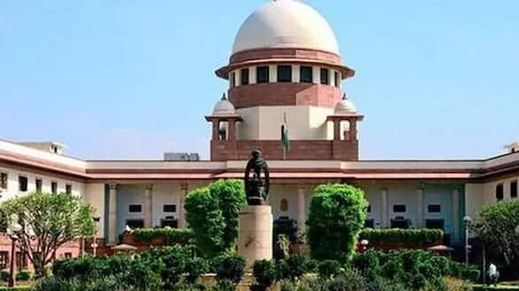 new citizenship notification league plea supreme court
