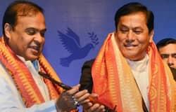<p>Sonowal or Himanta</p>