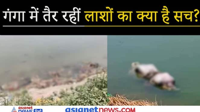 More than 40 dead bodies floating in the Ganges, know what is the matter? KPZ