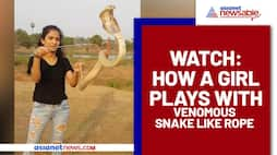 Girl playing with King Kobra goes viral; Watch Video