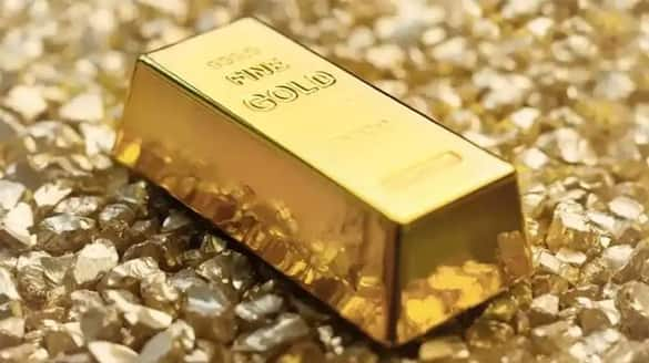 Gold Buiscut seized  in olavakkode railway station