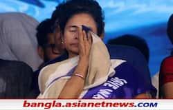 <p>Image of Mamata</p>