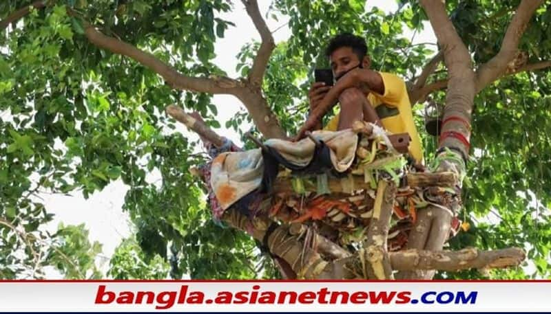 Telangana man stay in the tree for 11 days by making covid isolation ward bsm