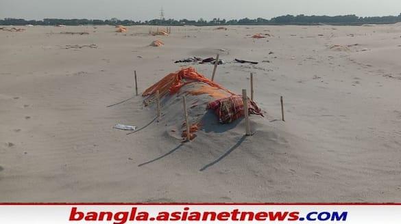 covid panic bodies were berried bank of ganga  near sangam in prayagraj bsm