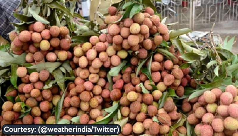 Boosting farmers Boosting farmers Shahi Litchi from Bihar exported to United Kingdom