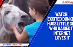 Watch: Excited donkey hugs little girl who raised it; internet loves it