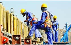 <p>expat workers</p>