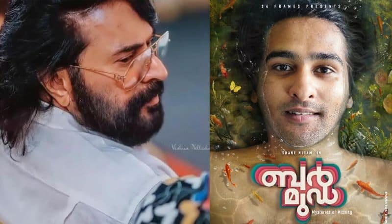 shane nigam starring bermuda first look unveiled by mammootty