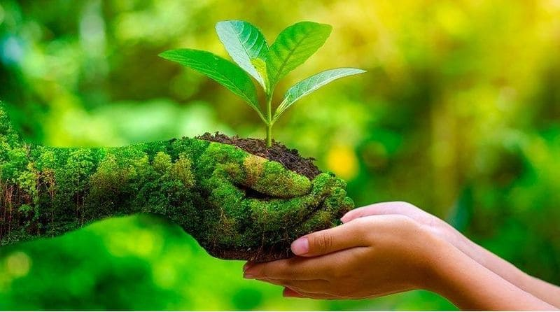World Environment Day 2021 get to know about the history significance and theme BRd
