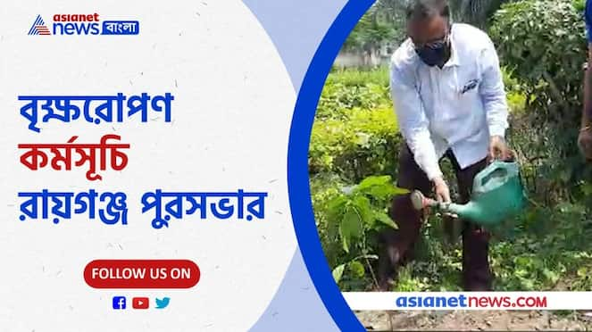 Raiganj Municipality Chairman Sandeep Biswas along with his colleagues planted trees in the local area Pnb