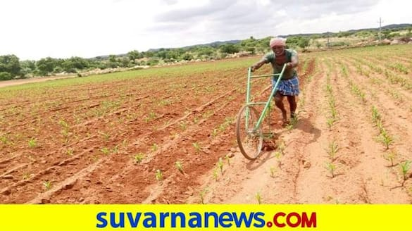 Farmers Faces Problems for Conditions for Zero Interest Loan in Karnataka grg