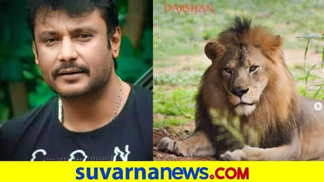 Zoo of Karnataka thanks actor Darshan and his fans for adopting animals vcs