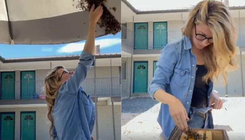 Woman removes bee colony with bare hands in viral video