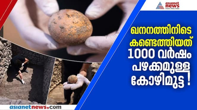 israel archeologists found 1000 years old egg