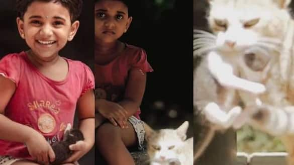 kunjappoo baby and cat viral photoshoot video