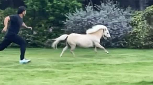 Watch MS Dhoni test his running skills against his pony-ayh