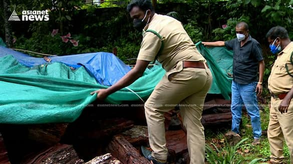 timber smuggle out of cardamom hill reserve caught by forest department