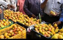 <p>mango&nbsp;</p>