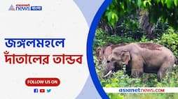 Difficult condition in this monsoon for rain, this time the elephant attack in the jungle Pnb