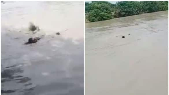 UP Cop Sees Man Drowning, Jumps Into Canal, Pulls Him To Safety