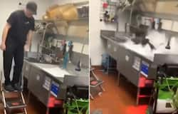 <p>Taco Bell employee celebrates his last at work in unique way; watch the video</p>