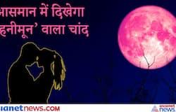 <p>Strawberry moon</p>
