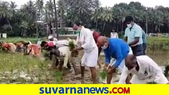 Drive to the Land Farming Planting in Udupi grg