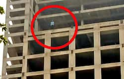 <p>Suicide in Greater Noida, Delhi, Delhi Police, Delhi</p>