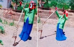 <p>Horrifying scarecrow leaves internet scared; watch the video</p>